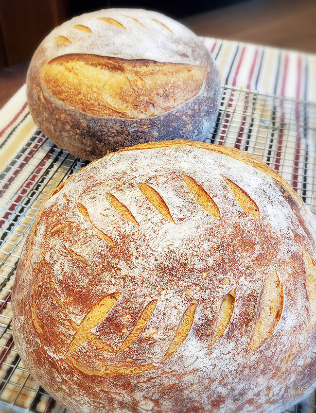 Naples Maine Breakfast sourdough